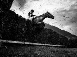 Un cavallo salta l'ostacolo al GP di Merano